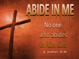 1 John 3-6 Abide in Me-brown