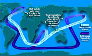 ocean convey belt