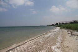 SHORE OF GALILEE