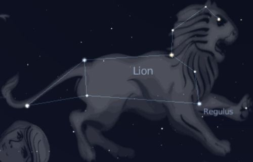78200c7ef0_constellation-lion-04